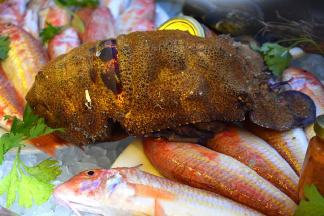 Manias fish tavern Kalymnos